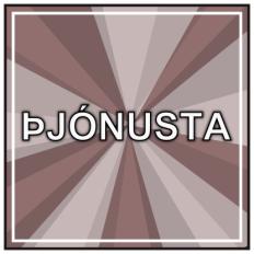 Þjónusta